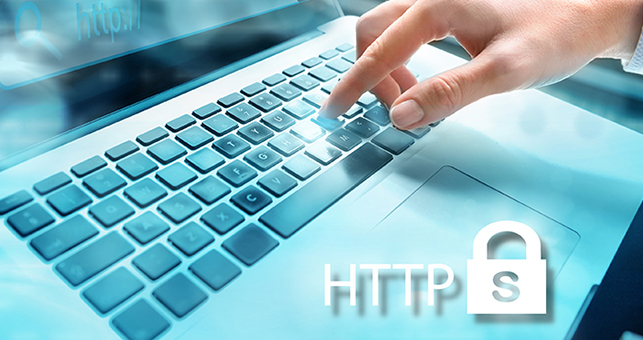 website security services sonoma county